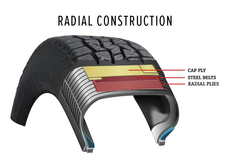 radial tire ply